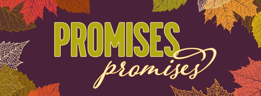 Promises Promises Series Graphic